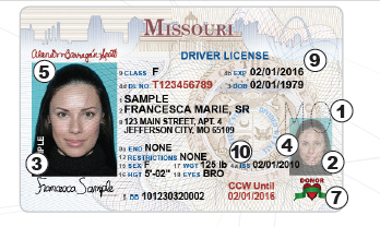 Software-juicy Missouri Check License - Driver